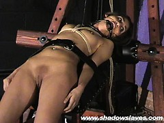 Sahara Knite debasing face thraldom and spanked
