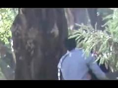 9hab sex algerie